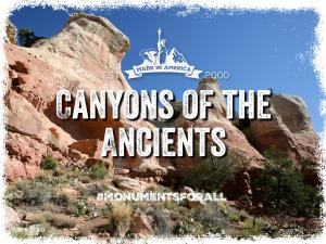 Canyons-of-the-Ancients