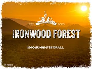 Ironwood-Forest